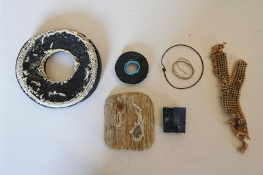 Findings from the strand line at Birling