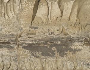 Close up rock at Kimmeridge - image 2