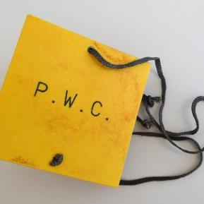 P.W.C. Book cover
